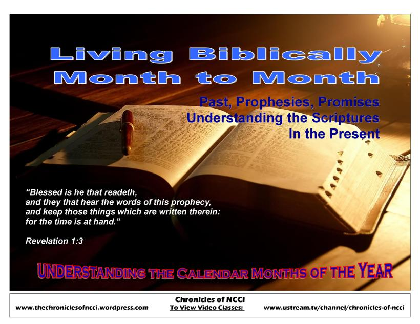 Living Biblically Month to Month cover
