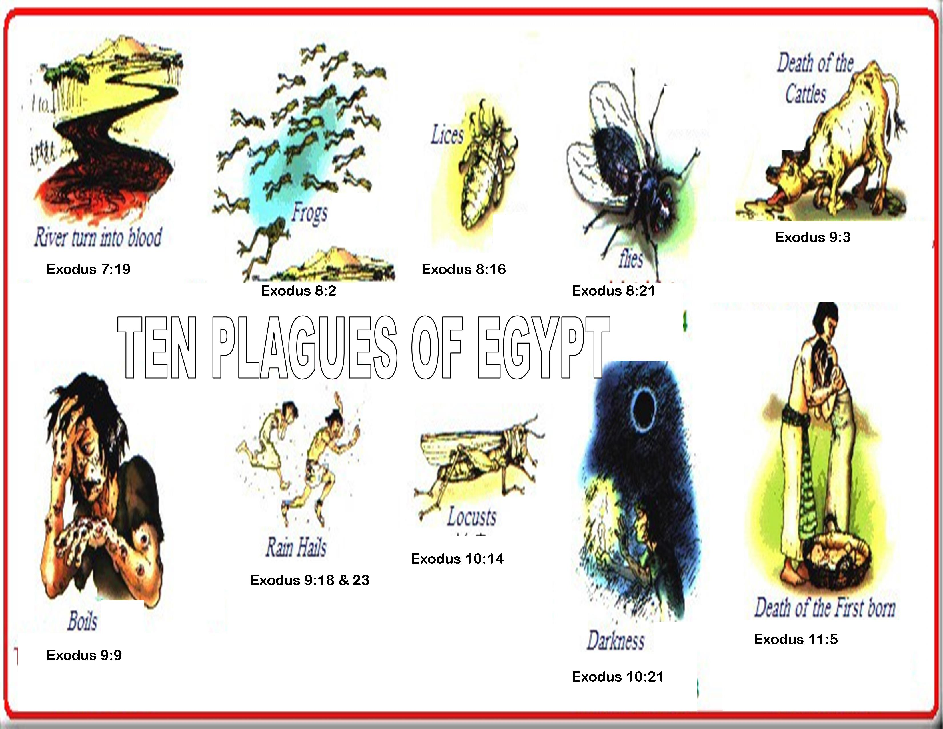 the ten plagues The ten plagues are ten sequential disasters god inflicted on egypt through moses and aaron, according to the biblical book of exodus the plagues generally increased in intensity as they progressed, culminating in the death of firstborn children in the 10th plague.